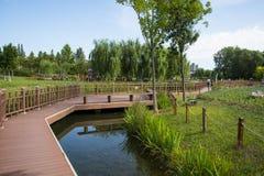 Azja Chiny, Pekin, Changyang park, Ogrodowy sceneryï ¼ Œwooden most zdjęcia royalty free