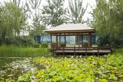 Azja Chiny, Pekin, Chaoyang park, ogrodowy landscapeï ¼ ŒWooden pawilon Obrazy Stock