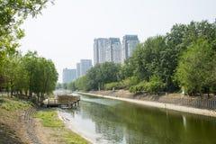 Azja Chiny, Pekin, Chaoyang park wiosna krajobraz, Ogrodowa sceneria Fotografia Stock