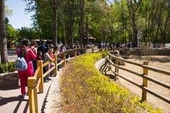 Azja Chiny, Pekin, Daxing, dzikie zwierzę park, Parkowy Landscapeï ¼ Œ Fotografia Stock