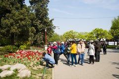 Azja Chiny, Pekin, Jingshan wzgórza park, wiosny landscapeï ogrodowy ¼ Œ Obrazy Royalty Free
