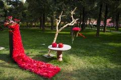 Azja Chiny, Pekin, Jingshan wzgórza park, wiosny landscapeï ogrodowy ¼ Œ Obraz Stock