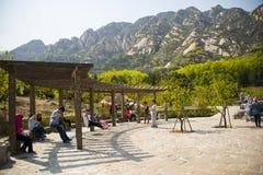 Azja Chiny, Pekin, Phoenix Dolinny naturalny sceniczny punkt, wiosny landscapeï ¼ ŒWooden pawilon Obrazy Royalty Free