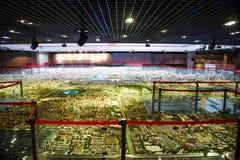 Azja Chiny, Pekin, planuje powystawową sala, urbanistyka model Zdjęcia Royalty Free