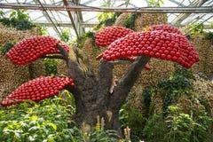 Azja Chiny, Pekin, rolniczy karnawał, nowożytna architektura, salowa powystawowa sala, scena, pomidoru krajobrazowy drzewo Obrazy Royalty Free