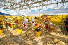 Azja Chiny, Pekin, rolniczy karnawał, Salowa powystawowa sala, scena, kreskówki zwierzę Obrazy Stock