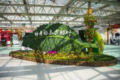 Azja Chiny, Pekin, rolniczy karnawał, Salowa powystawowa sala, sceneï ¼ ŒCartoon opuszcza zdjęcia stock