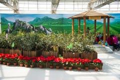 Azja Chiny, Pekin, rolniczy karnawał, Salowa powystawowa sala, sceneï ¼ ŒWooden pawilon Obrazy Royalty Free