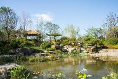 Azja Chiny, Wuqing, Tianjin, Zielony expo, Parkowa sceneria Obraz Royalty Free