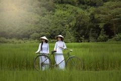 Azja piękne kobiety w Ao Dai Wietnam tradycyjnej sukni Fotografia Royalty Free
