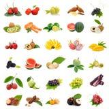 Azja tropikalne owoc, Inkasowy owocowy ustawiający na białym tle Obraz Stock