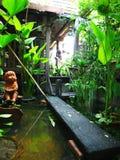 azjaci ogrodu staw fotografia stock