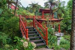 Azjata ogród Zdjęcie Royalty Free