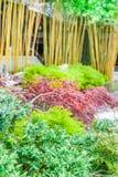 Azjatycka świątynia Zdjęcie Stock