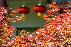 Azjatycka świątynia Fotografia Stock