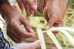 Azjatycka mama uczy jej córce dlaczego robić ryba od kokosowego lea Zdjęcia Stock