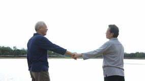 Azjatycka starsza pary mienia ręka Zdjęcia Royalty Free