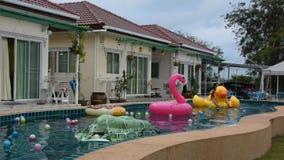 Azjatycka tajlandzka kobieta bawić się zwierzęcia zabawkarski gumowy unosić się na basen wodzie i pływa zbiory