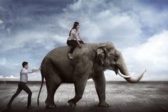 Azjatycki biznesowego mężczyzna pchnięcia słoń Obrazy Royalty Free
