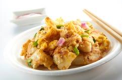 Azjatycki domokrążcy jedzenie Zdjęcie Royalty Free