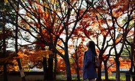 Azjatycki dziewczyny odprowadzenie w Japońskiego klonu ogródzie, Kyoto, Japonia zdjęcie stock