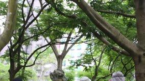 Azjatycki fotograf bierze obrazki przyroda z DSLR kamerą zdjęcie wideo