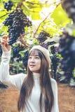 Azjatycki kobiety winemaker sprawdza winogrona w winnicy zdjęcia stock