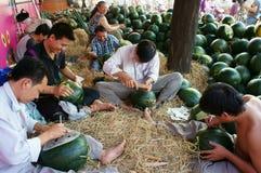Azjatycki mężczyzna, rolnika rynek, graweruje arbuza Obrazy Royalty Free