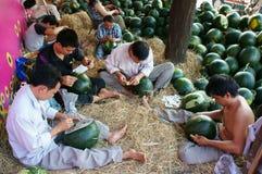 Azjatycki mężczyzna, rolnika rynek, graweruje arbuza Zdjęcia Stock