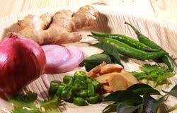 Azjatycki masala imbir, liście, zieleni chłodni, cebula i kolendery, fotografia royalty free