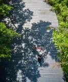 Azjatycki podróżnika wakacje relaksuje z bicyklem w natura parku obrazy royalty free