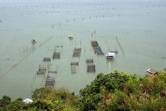 Azjatycki rybołówstwo uprawia ziemię w Tajlandzkim stylu Zdjęcie Stock