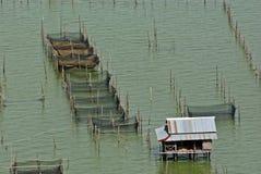 Azjatycki rybołówstwo w Tajlandzkim jeziorze Fotografia Stock