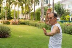 Azjatycki starszego mężczyzna odzieży koszula biały stojak i praktyki tai chi na trawie Fotografia Stock