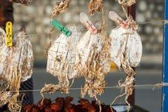 Azjatycki uliczny jedzenie zakończenie up - wysuszona kałamarnica - Obraz Royalty Free