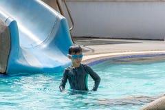 Azjatyckie chłopiec pływają w basenie obraz royalty free