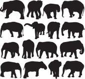 Azjatyckiego słonia sylwetki kontur ilustracja wektor
