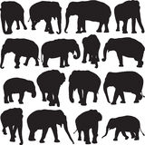 Azjatyckiego słonia sylwetki kontur royalty ilustracja