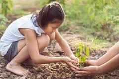 azjatykci dzieci zasadza małego drzewa z mater na ziemi Pojęcie g Zdjęcia Royalty Free