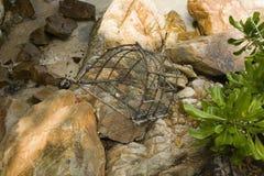 azjatykci garnek połowów Zdjęcie Royalty Free