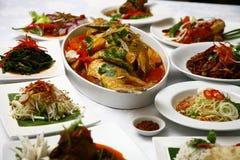 azjatykci jedzenie fotografia stock