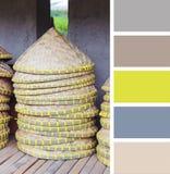 azjatykci kapelusz stożkowaty kolor palety swatches fotografia stock