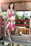 azjatykci kobieta w ciąży Zdjęcie Stock