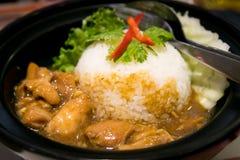 azjatykci kurczaka zbliżenia Hainan ryż styl Obraz Stock