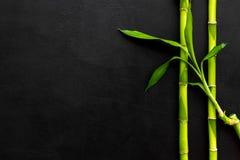 azjatykci tło Zielony bambus rozgałęzia się na czarnej tło odgórnego widoku przestrzeni dla teksta zdjęcie stock