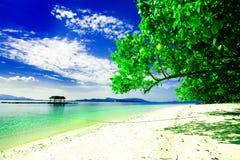 azjatykci tropikalnym raju Zdjęcia Royalty Free
