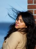 azjatykcia piękna kobieta Zdjęcie Stock