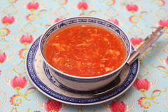 azjatykcia zupę Zdjęcie Stock