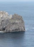Azorean kust Arkivfoto