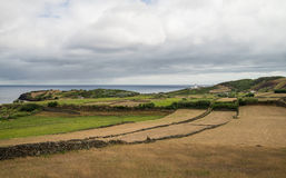 Azorean landscape Stock Images
